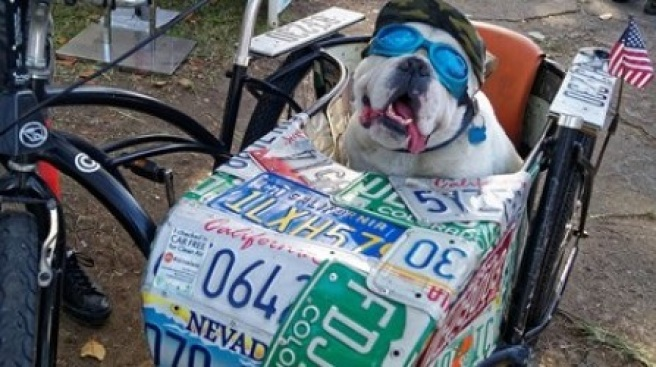 Arrive by Bark -- er, Bike -- at SB Earth Day