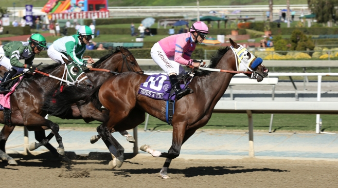 Rare DQ, Breakdown Mar Opening Breeders' Cup Race
