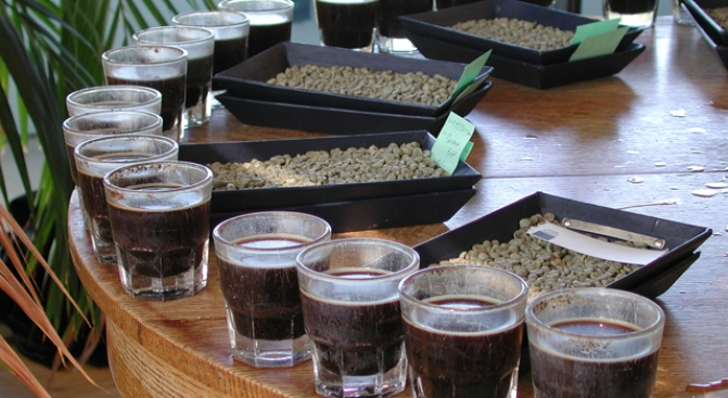 "Cupping Coffee With Bay Area ""Titans"""