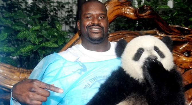 "Shaq Panda ""Wrestles"" at Verizon Center"