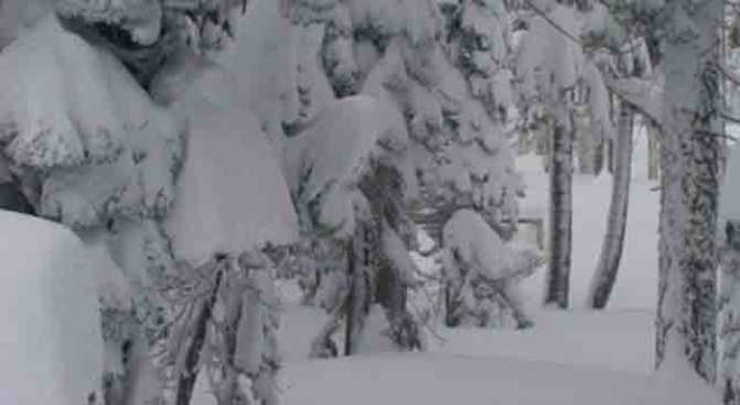 Storm Measured in Feet in Sierra