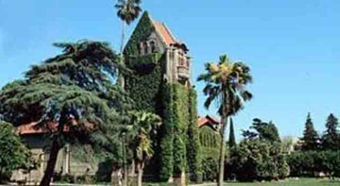 SJSU Rejects Spring 2011 Admissions