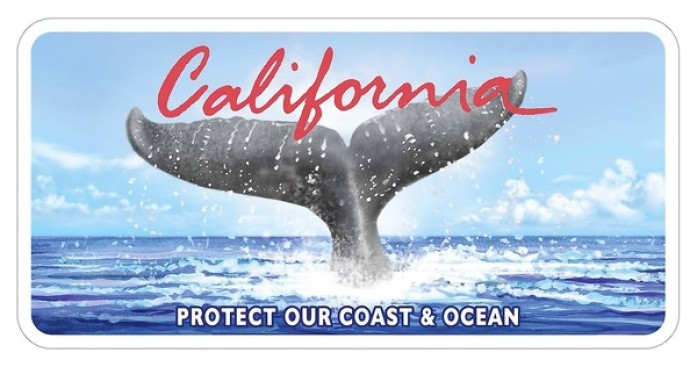 Calif. Gets New Whale Tail Plates