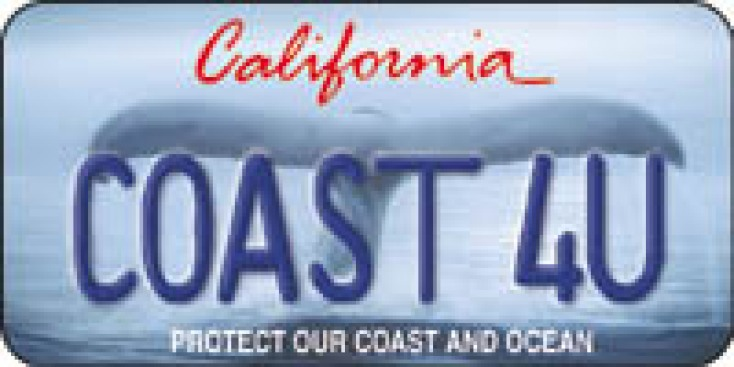 State Plates May Go Digital