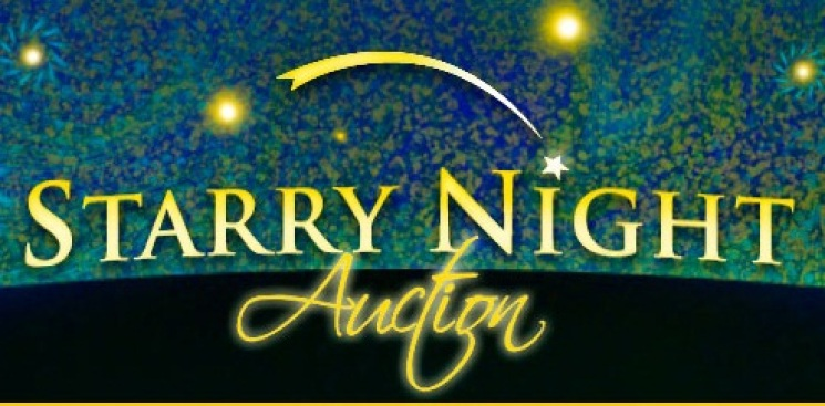 The 19th Annual Starry Night Auction