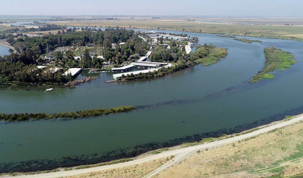 Toxic Algae Bloom Warning Issued for Delta Areas in Contra Costa County
