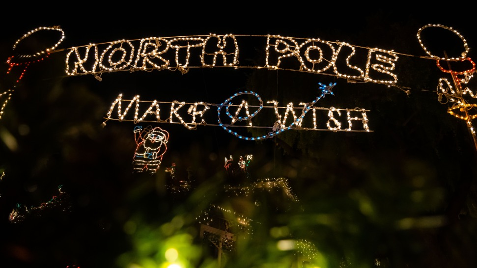 Willow Glen Christmas Lights