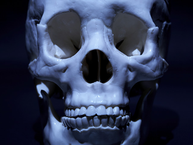 File Image: Human Skull